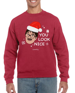 You Look Nice, Christmas Jumper (Unisex) Jumper BanterKing Small Red