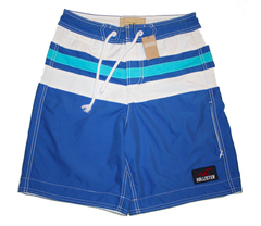 Hollister Boardshorts