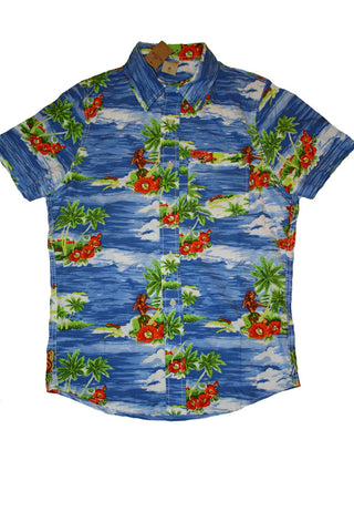 Hollister Summer Polo Collection-Small/Floral