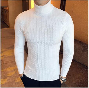 Autumn Winter 2020 Elegant Slim-fit Turtleneck Wool Sweater
