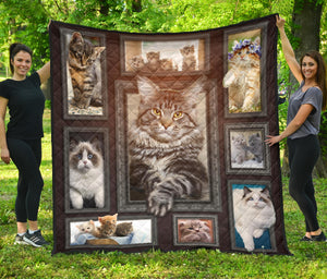 Cute Windows Cat Quilt For Bedding