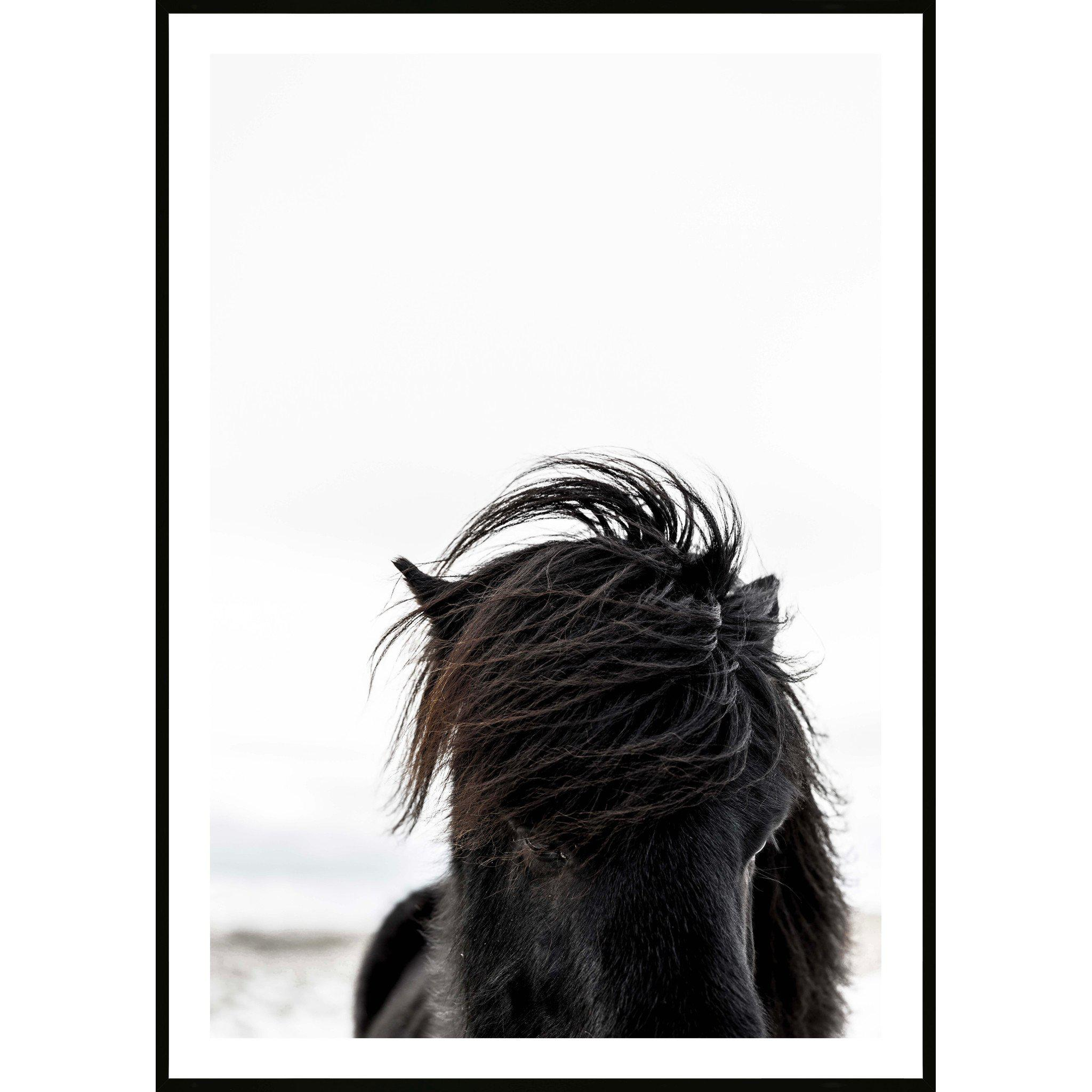 The Stallion - Art Print, Portrait - mykodu