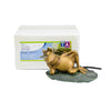 Aquascape UK Lazy Frog Spitter 78311 - WaterFeature.Shop