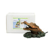 Aquascape UK Alligator Spitter - WaterFeature.Shop