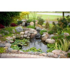 Micro Pond Kit - Aquascape UK - WaterFeature.Shop