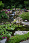 Large Pond Kit (Ecosystem) - WaterFeature.Shop