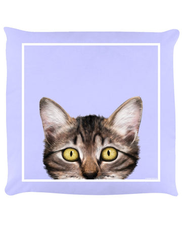 Inquisitive Creatures Cute Kitten Cushion