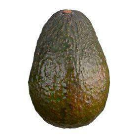 AVOCADO Tropical Couryah
