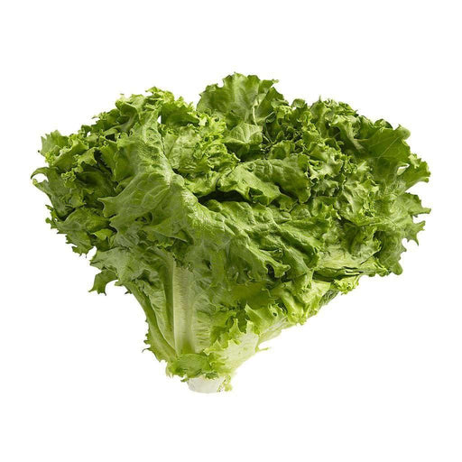 Green Leaf Lettuce (1 each) Lettuce Couryah