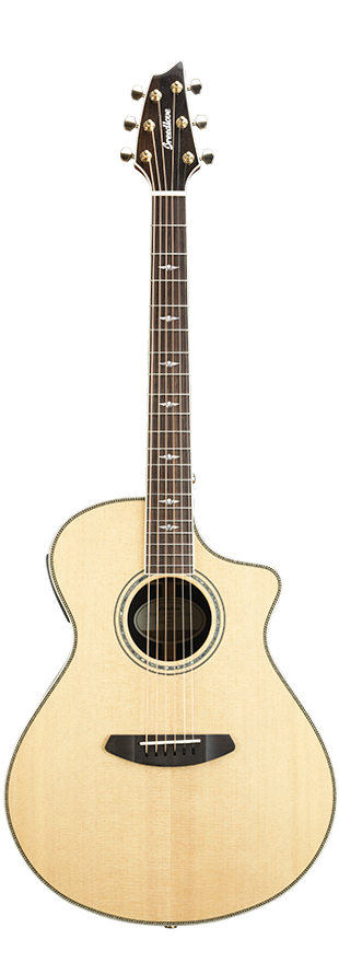Breedlove Stage Exotic Concert CE / front