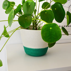 Planter Basket - Green Block