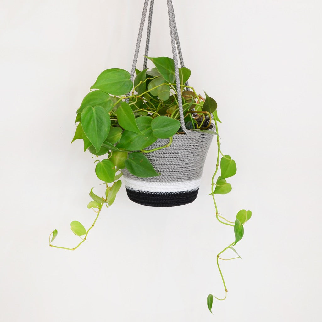 Mbizi Hanging Planter Medium - SALE