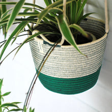Hanging Planter Greenery