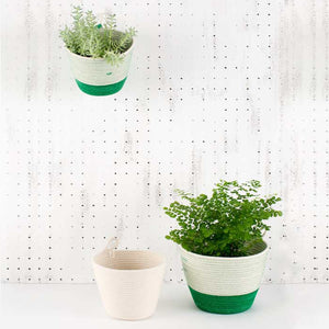 Planter Basket Greenery