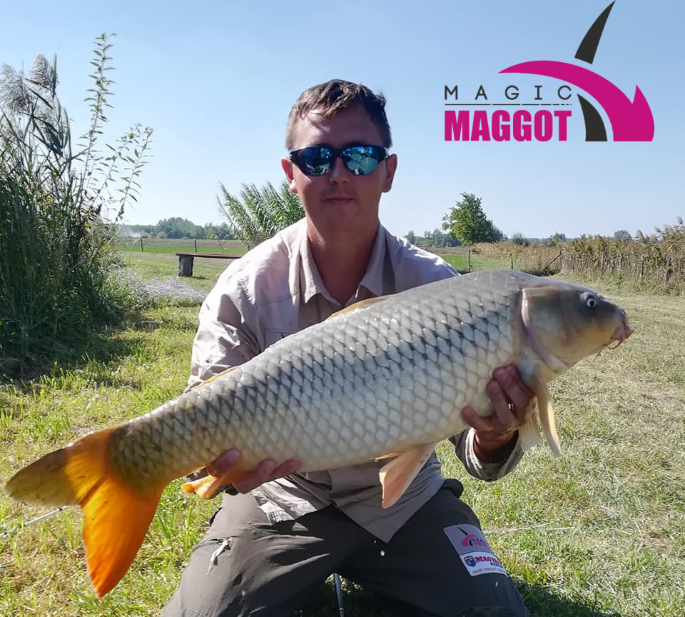 Good Day Charity-Magic Baits