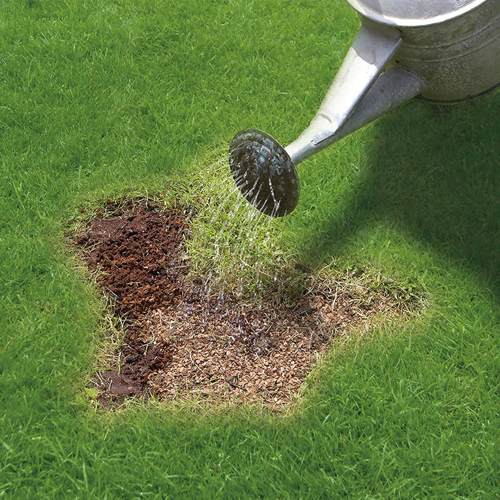 Feed /& Coir Up to 20 Patches Miracle-Gro Patch Magic  Grass Seed 1.5Kg