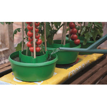 Garland Set of 3 Plant Halos Garden Grow Bags Pots Watering Crop Support Green