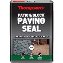 Thompson's Patio & Block Paving Path Seal Protector 5L – Satin Sheen Finish