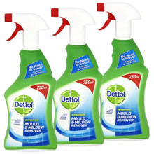 Dettol Anti Bacterial Mould & Mildew Remover 750ml Spray Kill Bacteria Viruses