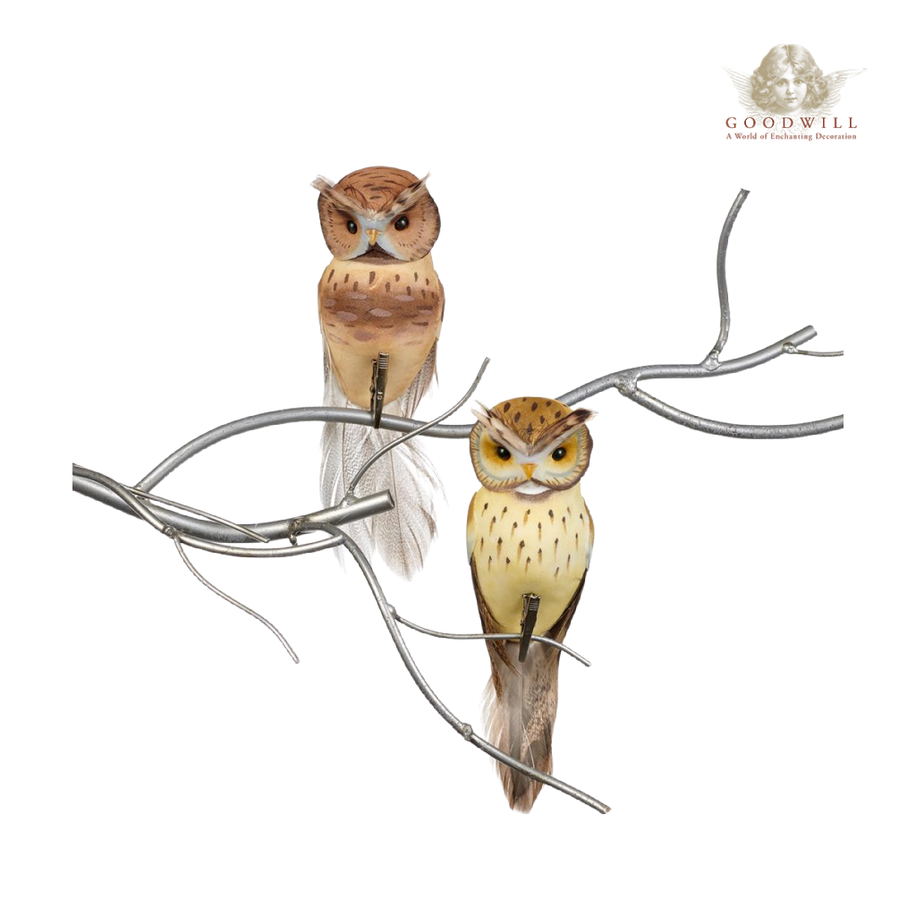 Goodwill Belgium 2021 Feathered Owl Clip Duo