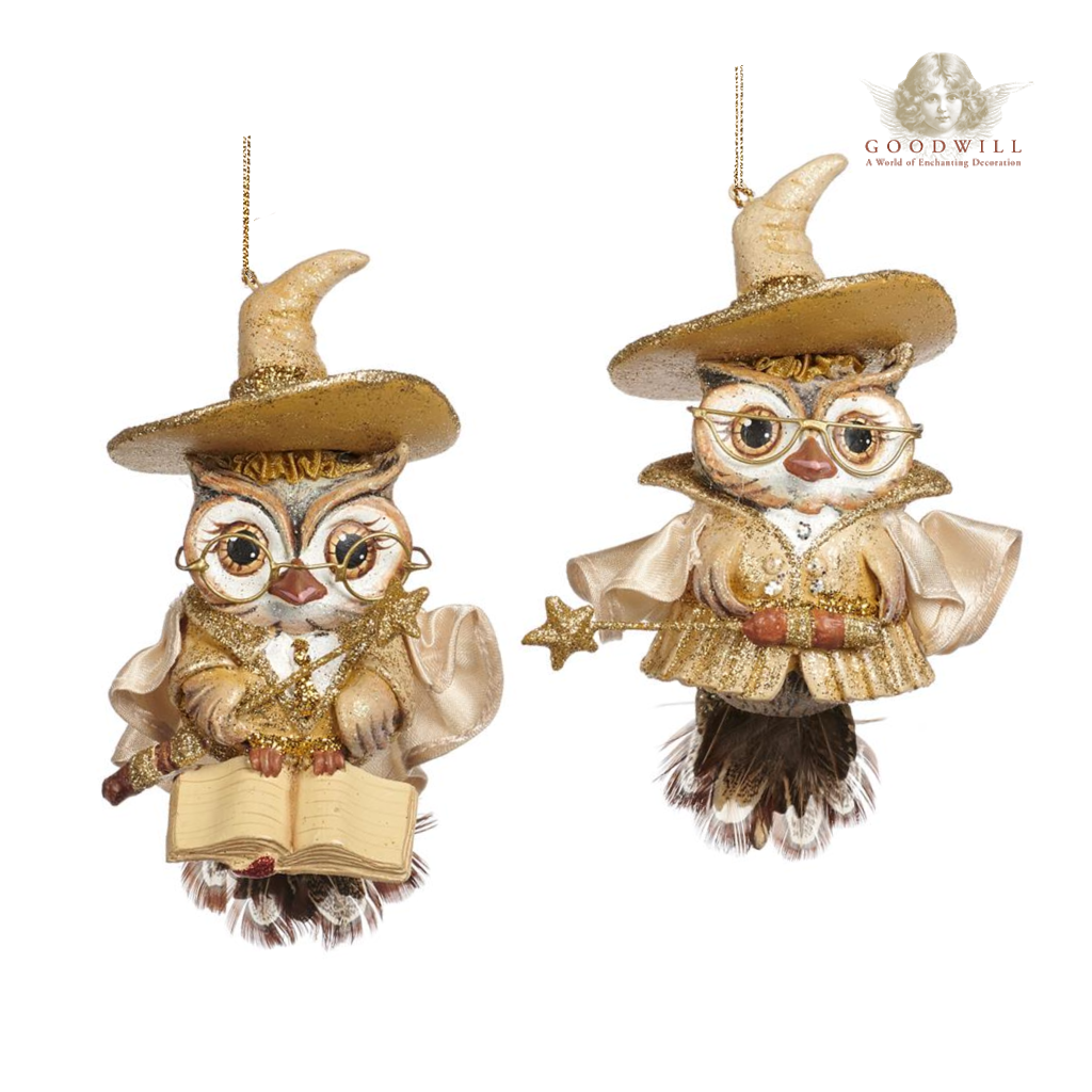 Goodwill Belgium 2021 Wizard Boy Girl Owl Hanging Decoration 20cm