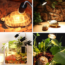 Load image into Gallery viewer, CRLight 3 Pack 50W UVA(97%) & UVB(3%) Full Spectrum Small Sun Light Halogen Basking Lamp for Reptile Lizard