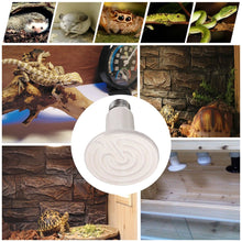 Load image into Gallery viewer, CRLight 75W Ceramic Heat Infrared Emitter Lamp for Reptile Amphibian Pet Heater Lizard Brooder Bulb, White Round Shape, 2 Pack