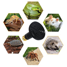 Load image into Gallery viewer, CRLight 2pack 50W Ceramic Heat Infrared Emitter Lamp for Pet Heater Lizard Reptile Brooder Bulb, AC 90-120V, Black