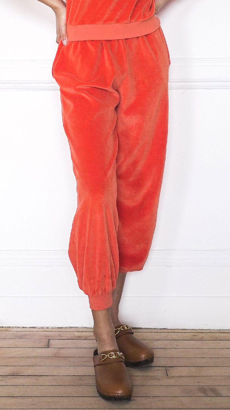 High Rise Pocket Pants - Clementine