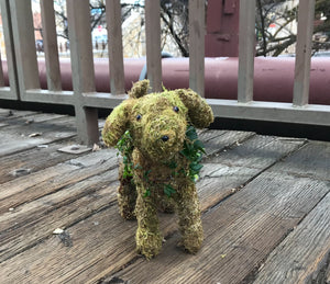 Ivy Puppy Topiary