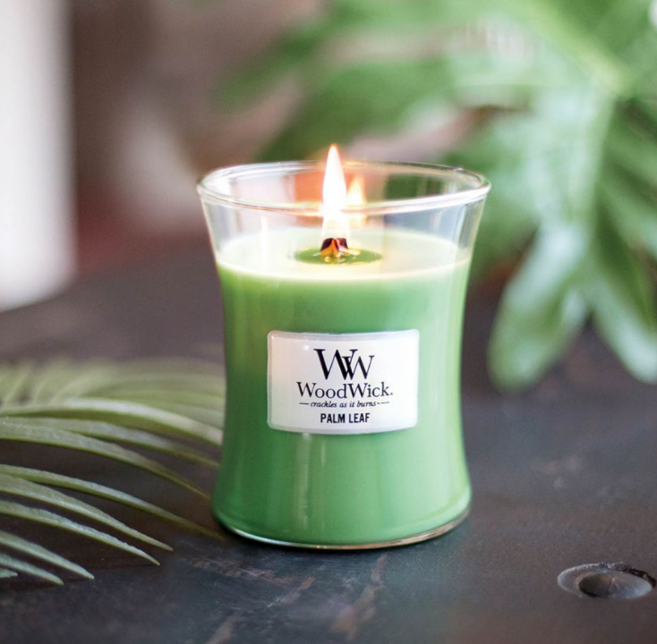 WoodWick Palm Leaf Medium