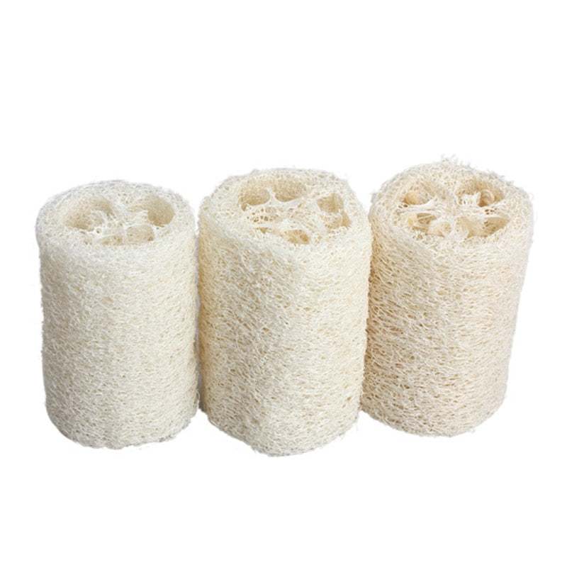 All-Natural Loofah (Luffa) Sponge (3 pcs)