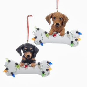 Kurt Adler Dachshund With Bone Ornaments For Personalization, 2 Assorted, A1680DA