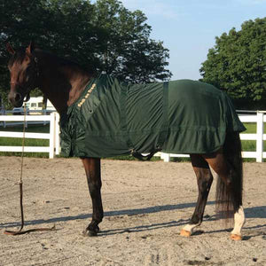 BOT Therapeutic Horse Mesh Sheet, Hunter Green