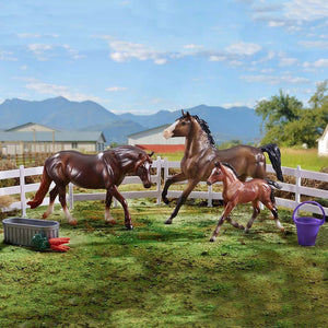 Breyer Freedom Series Pony Power Set