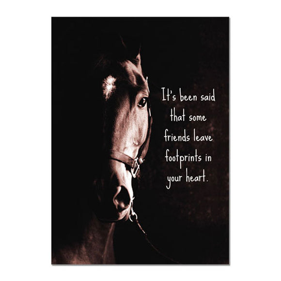 Hoofprints Sympathy Greeting Card, pack of 6
