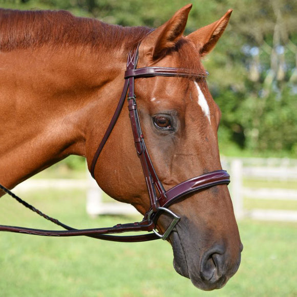 Red Barn Tuscany Fancy Stitched  Bridle