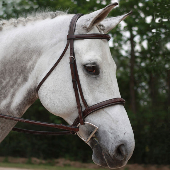 KL Select Italia Middleburg Hunter Bridle