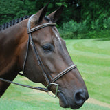 KL Select Italia Venezia Hunter Bridle