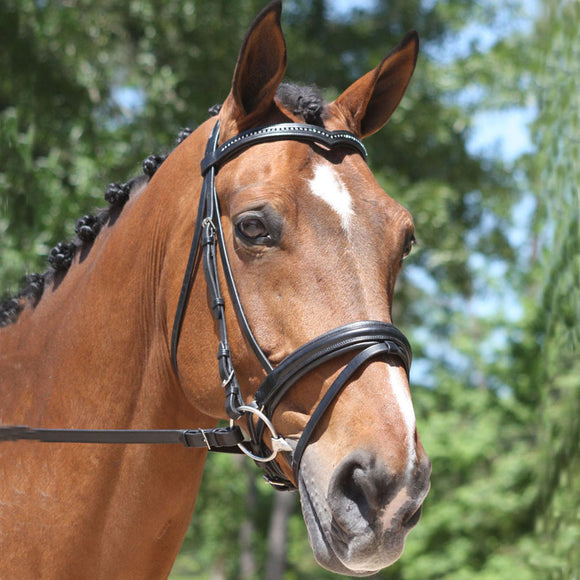 KL Select Italia Pirouette Snaffle Bridle