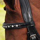 Red Barn Cadence Dressage Bridle