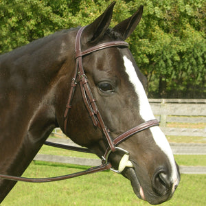Red Barn Sovereign Bridle