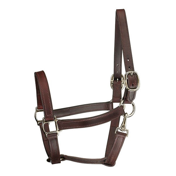 Perri's Track Halter with Throat Snap