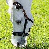 ThinLine Flexible Filly Slow Feed Grazing Muzzle,  3 cm Opening