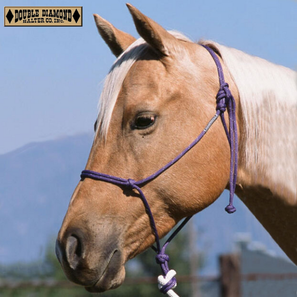 Double Diamond Buck Brannaman Series Halter