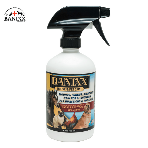 Banixx Horse & Pet Care,  16oz Spray