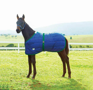WeatherBeeta 420D Growing Foal Blanket