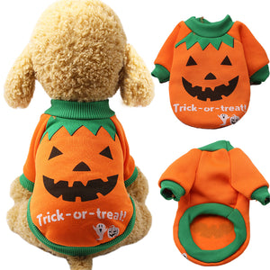 Costume-pull Halloween citrouille pour chats et chiens - ChatLheure