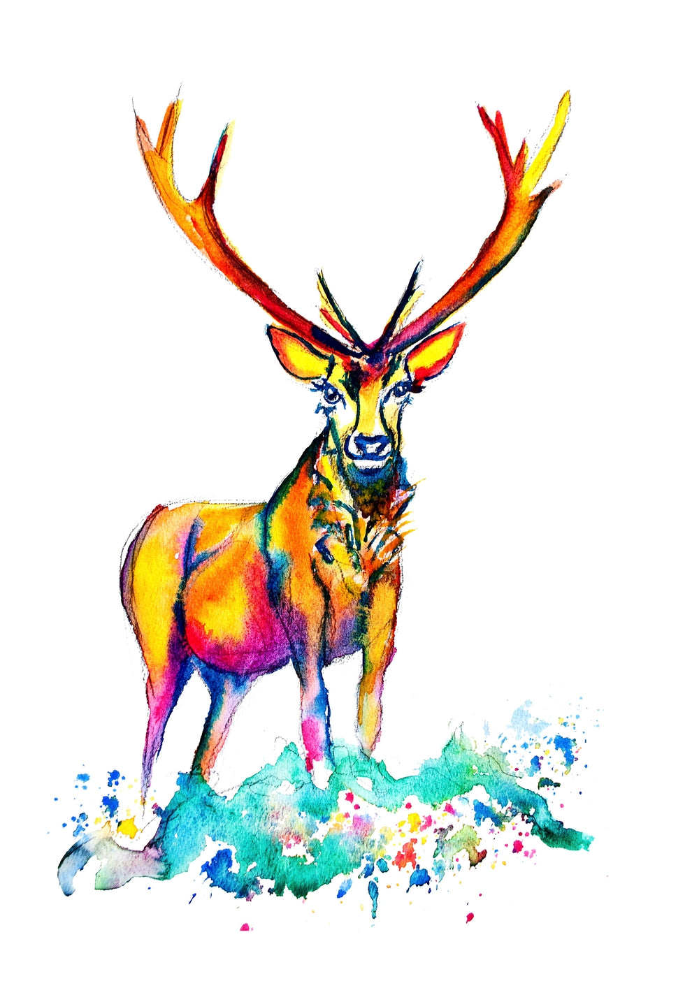 Colourful Stag A3 Print