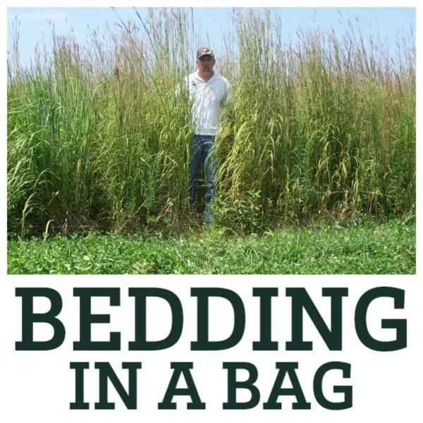 Bedding in a Bag - A Man Standing in Tall Grass